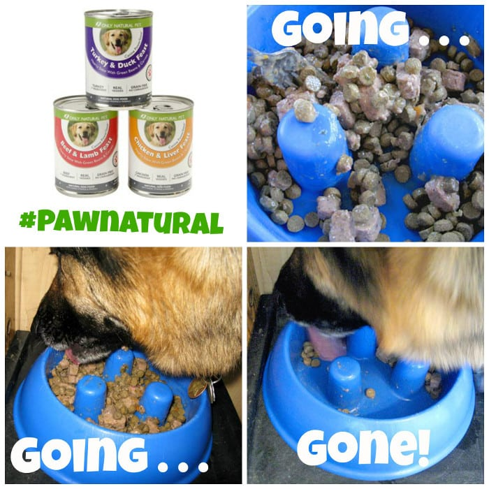 Only Natural Pet, Canine PowerStew, carrageenan-free