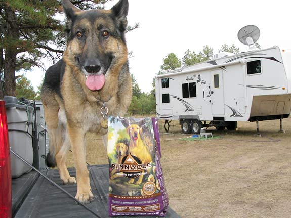 Wyatt enjoys Pinnacle while camping