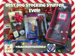 dog stocking stuffer