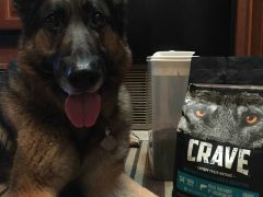 affordable quality grain-free pet food