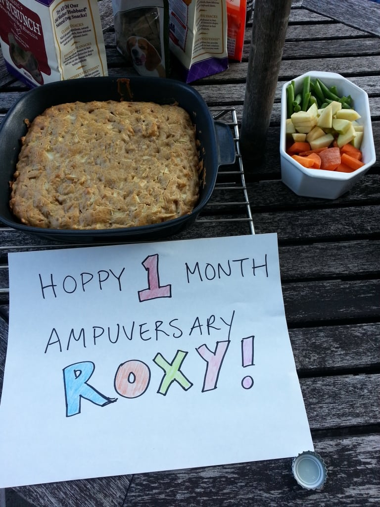 Tripawd Roxy's Ampuversary Cake