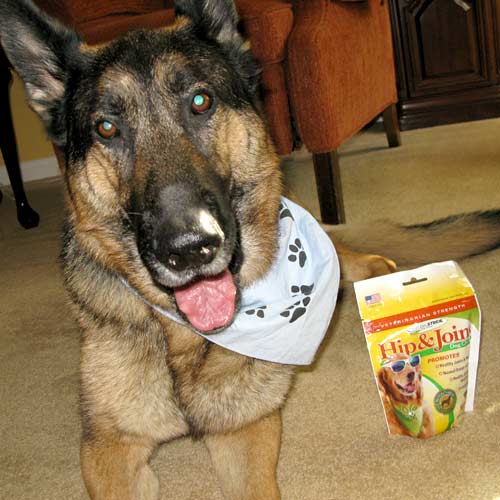 Natural Stride Hip and Joint Dog Chews Review