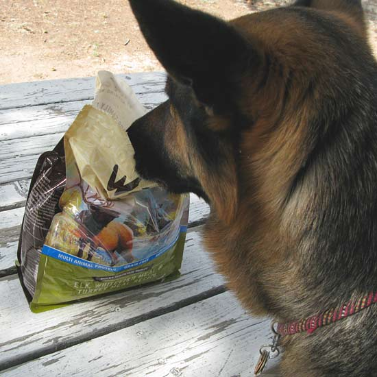 Wild Calling High Protein Grain Free Dog Food