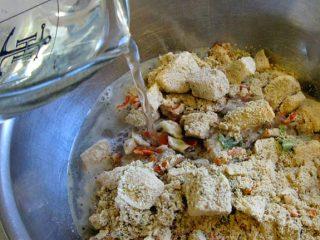 Oracle Freeze Dried Raw Dog Food