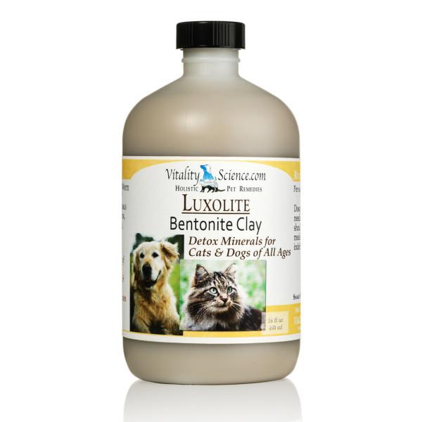 dog cat diarrhea help
