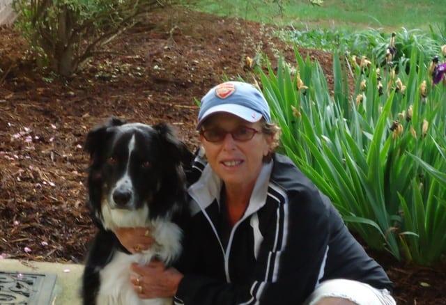 Tripawd holistic vet help