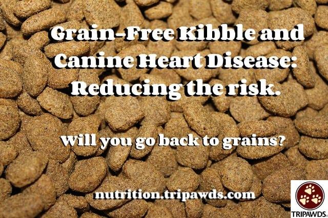 Grain Free Kibble and Canine Heart Disease