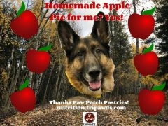 Apple Pie Dog Treats