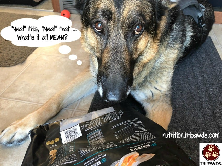 Wyatt's pet food mystery meat investigation