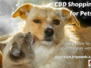 CBD for Pets Shopping Tips