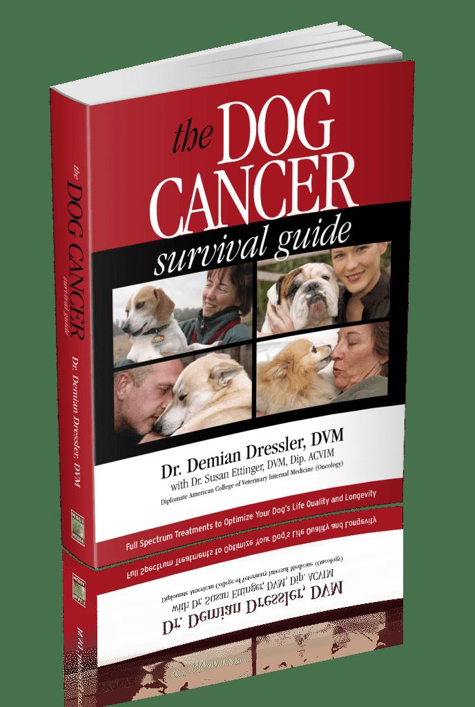 Dog Cancer Survival Guide