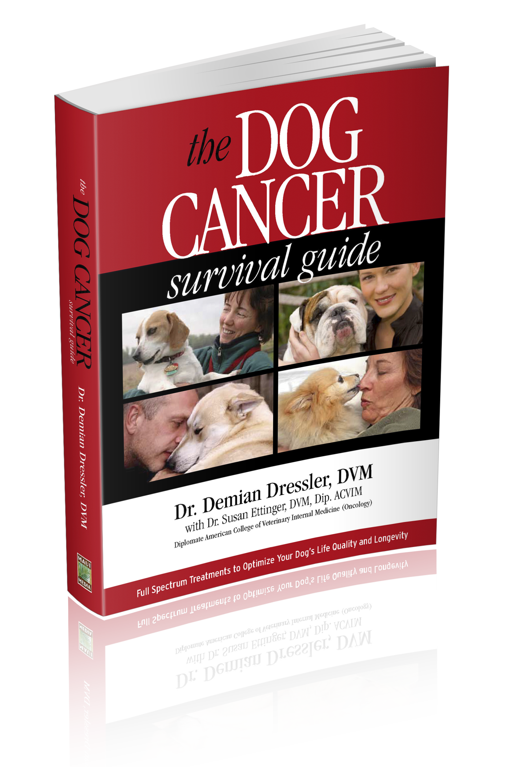 dog cancer diet ideas