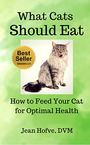 what cats should eat