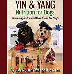 yin and yang nutrition for dogs