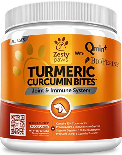 Curcumin Effects, Treatment and Dosages for Dog Cancer Therapy