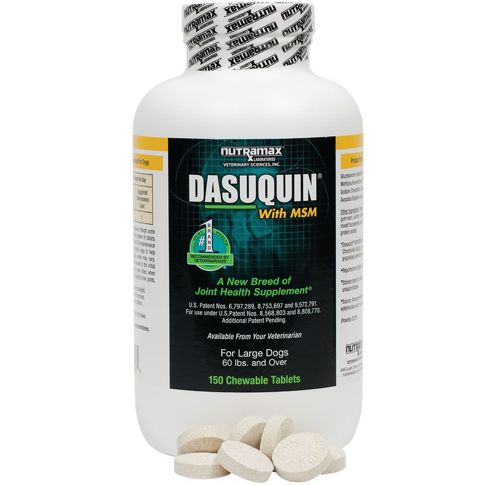 Dasuquin joint support for dogs