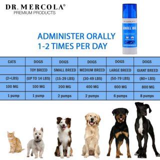 Dr Mercola Krill Oil