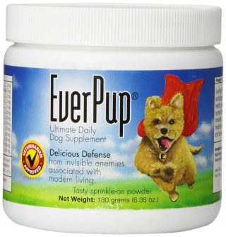 EverPup