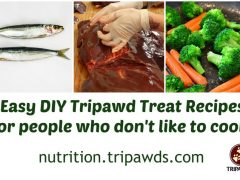 DIY Tripawd Treat Recipes
