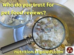pet food reviews on the internet