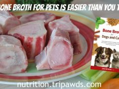 Make Bone Broth For Pets