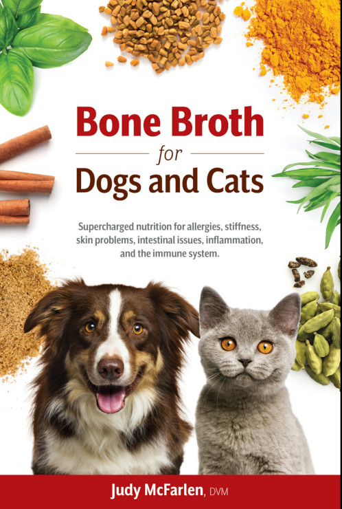 Make Homemade Bone Broth for Pets