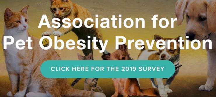 pet obesity survey