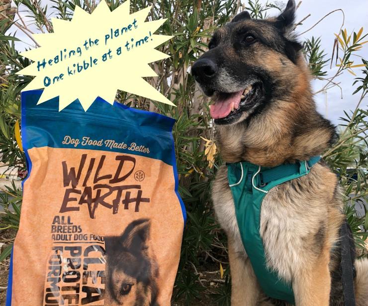Wild Earth pet food coupon