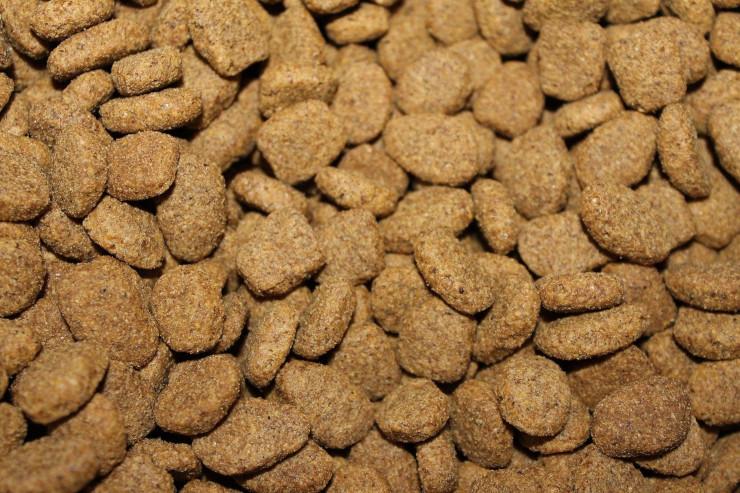 cheap pet food kibble