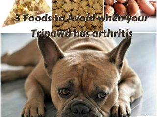 worst foods for arthritis
