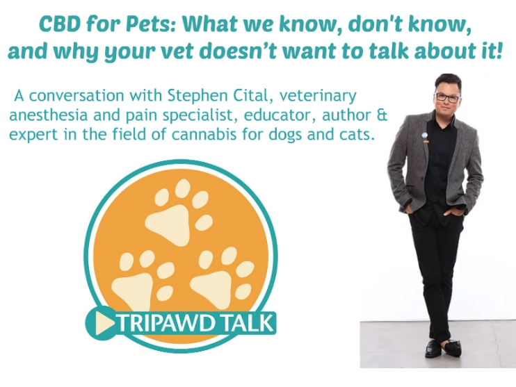 Truth about CBD for pets