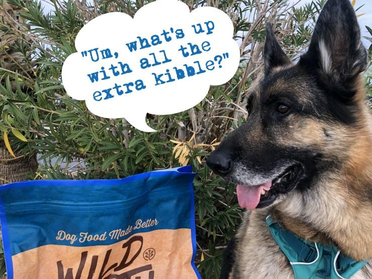 bulk pet food tips