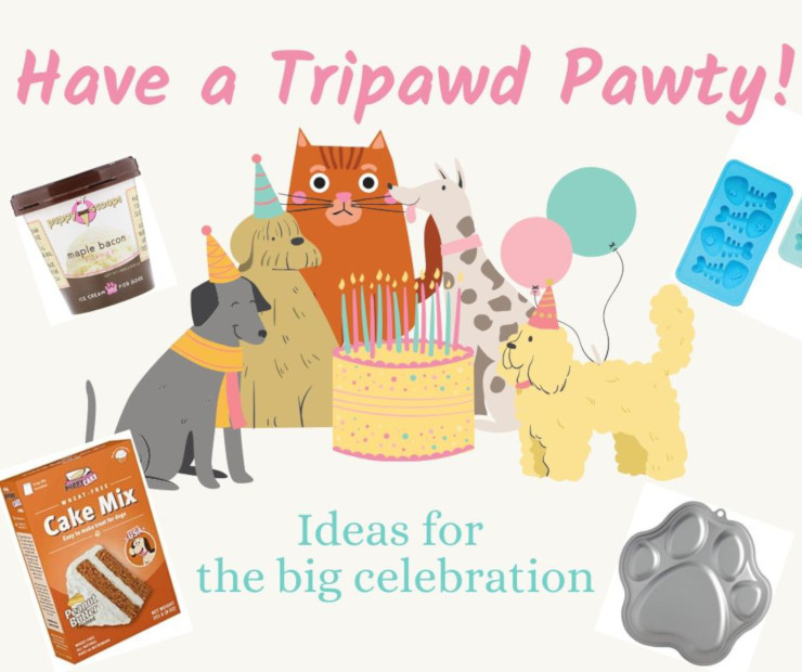 Have a DIY Tripawd Party
