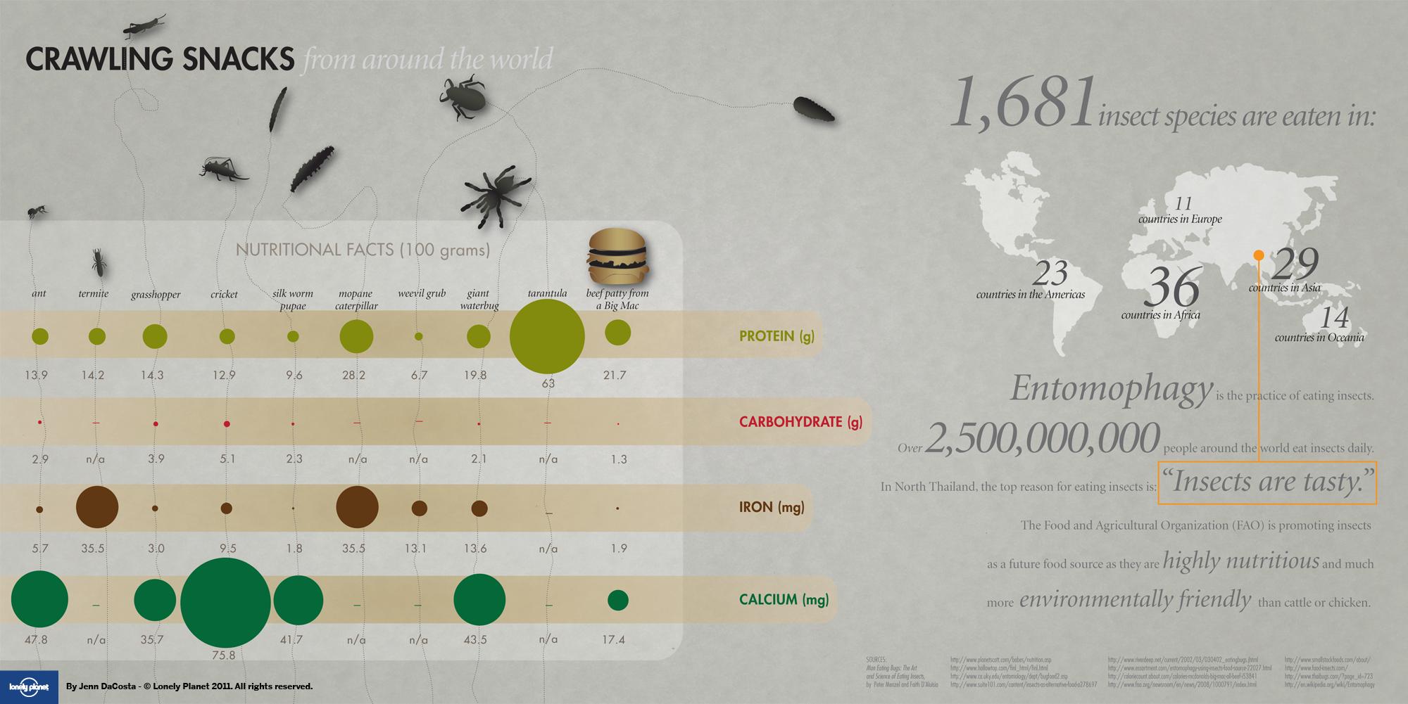 bug grub pet food